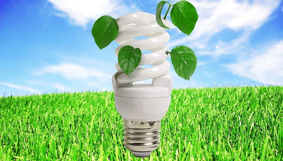 Sujet Recyclage Ampoules Lampes Le Magazine Electricite Plus
