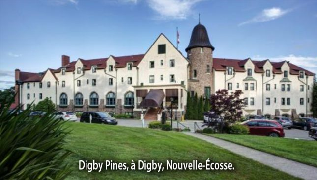 digby_pines