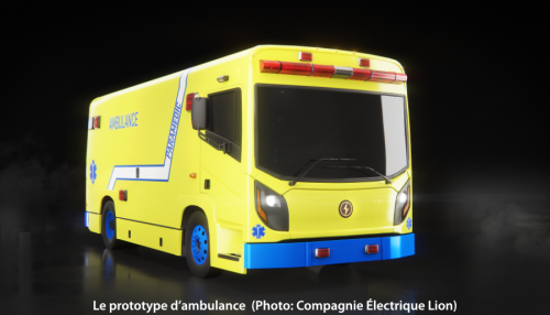 Lion Ambulance