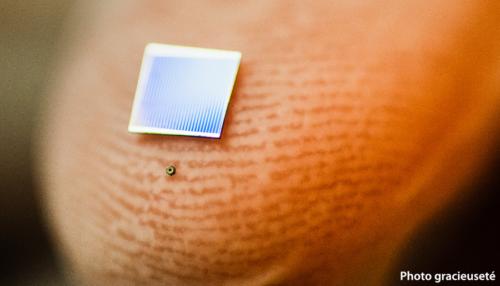 La plus petite cellule solaire au monde