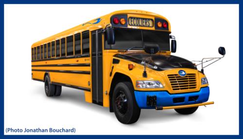 Autobus électriques Blue Bird